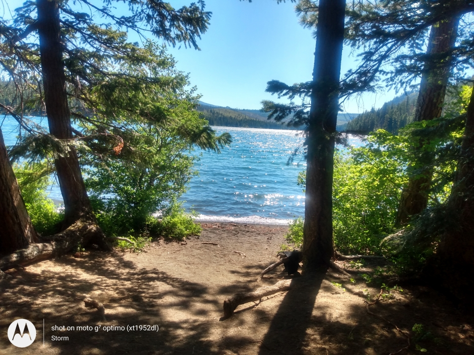 Sutte lake Oregon. A great swim!
